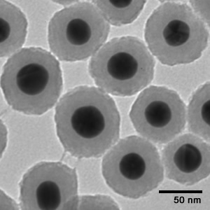 Figure 3: TEM image of silica coated gold nanoparticles. The gold nanoparticles are extremely electron dense, causing them to have much higher contrast than the less electron dense silica shells.