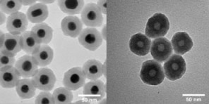 TEM images of silica coated gold nanoparticles and Hollow Porous Silica (HoPS) drug delivery nanoparticles.